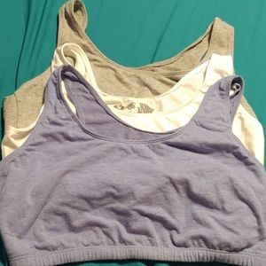 Fruit of the loom sports bras